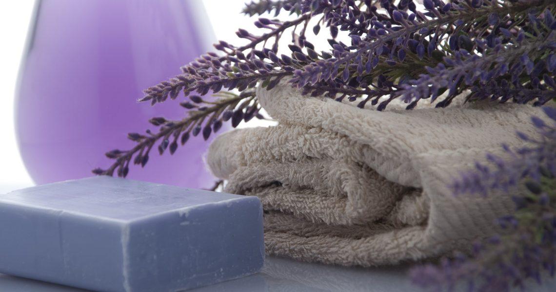 lavender-3066531_1920